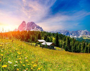 Alpine Meadow Jigsaw Puzzle