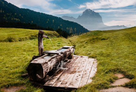 Alpine Water Trough Jigsaw Puzzle