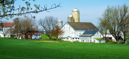 Amish Farm Jigsaw Puzzle
