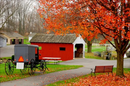 Amish Village Jigsaw Puzzle