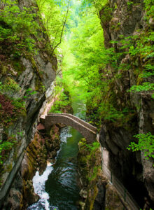 Areuse Gorge Jigsaw Puzzle