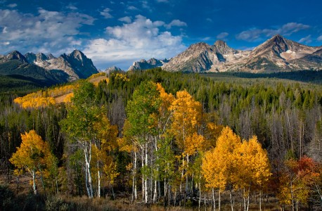 Aspen and Sawtooths Jigsaw Puzzle