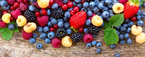 Assorted Berries Jigsaw Puzzle