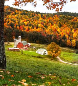 Autumn Farm Jigsaw Puzzle