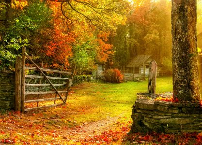 Autumn Gate Jigsaw Puzzle