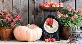 Autumn Scales