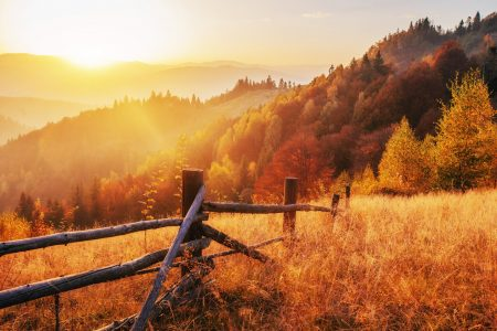 Autumn Sun Jigsaw Puzzle