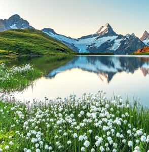 Bachalpsee Lake Jigsaw Puzzle