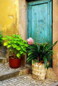 Back-street Door Jigsaw Puzzle