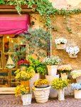 Bardolino Shop