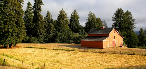 Barn and Pasture Jigsaw Puzzle