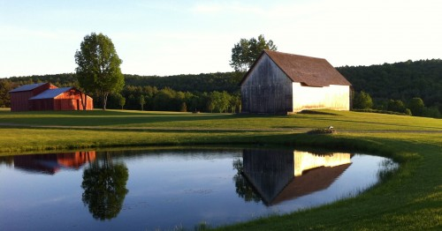 Barn and Pond Jigsaw Puzzle
