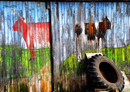 Barn Door Mural Jigsaw Puzzle
