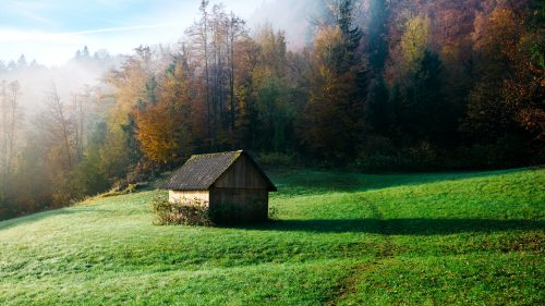 Barn in the Mist Jigsaw Puzzle