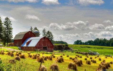 Barns and bales Jigsaw Puzzle