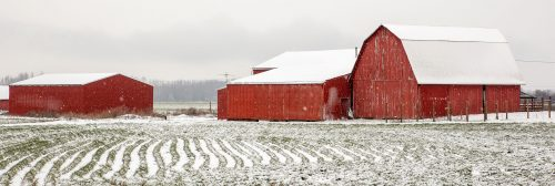 Barns in Snow Jigsaw Puzzle