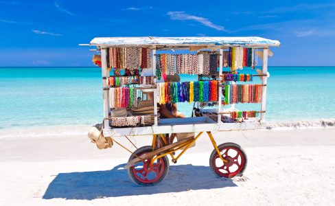 Beach Cart Jigsaw Puzzle
