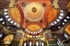 Beautiful Domes