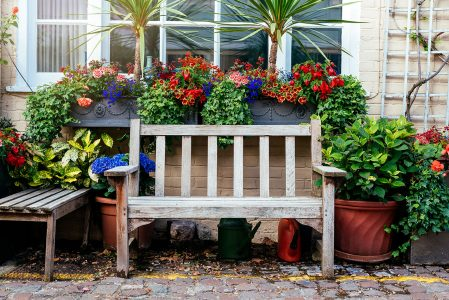 Bench and Flowers Jigsaw Puzzle