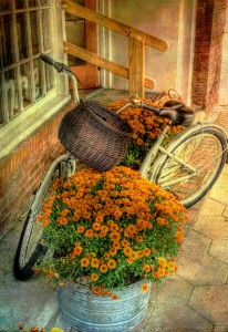 Bicycle and Flowers Jigsaw Puzzle