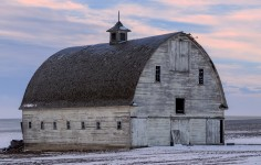Big White Barn