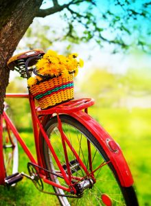 Bike and Flowers Jigsaw Puzzle
