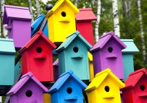 Birdhouse Colors