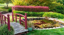 Bisley Garden