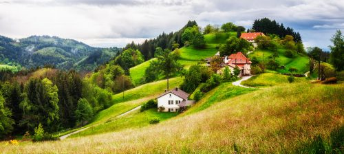 Black Forest Homes Jigsaw Puzzle