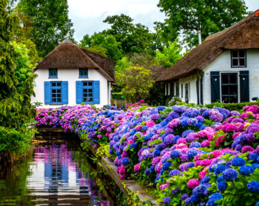 Blooming Canal Jigsaw Puzzle