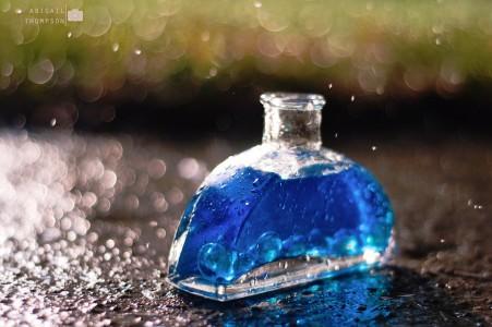 Blue Bottle Jigsaw Puzzle
