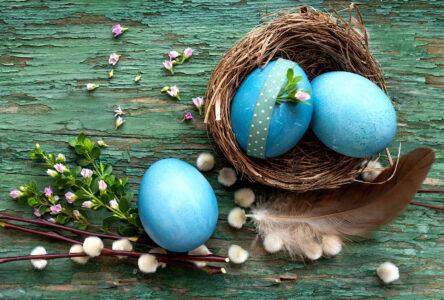Blue Eggs Jigsaw Puzzle