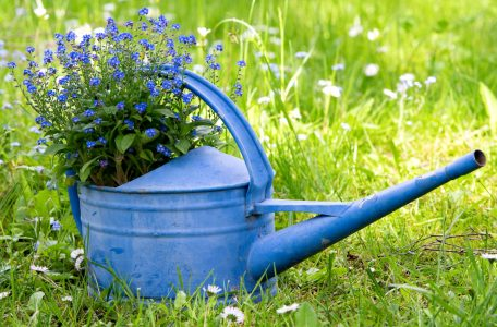 Blue Watering Can Jigsaw Puzzle