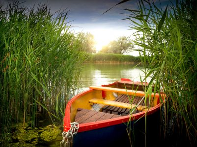 Boat in the Reeds Jigsaw Puzzle