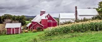 Bogie Mountain Farm