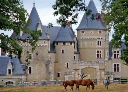 Bois-Morand Castle Jigsaw Puzzle