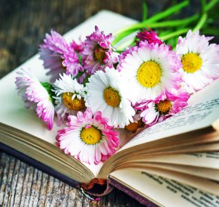 Book and Daisies Jigsaw Puzzle