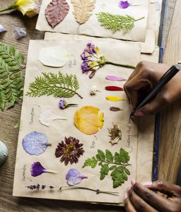 Botanical Notebook Jigsaw Puzzle