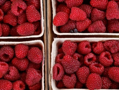 Boxed Raspberries Jigsaw Puzzle