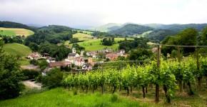 Breisgau