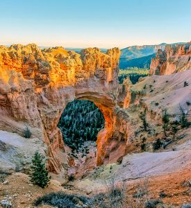 Bryce Canyon Arch Jigsaw Puzzle