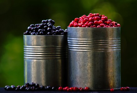 Buckets of Berries Jigsaw Puzzle