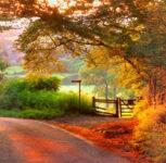 Bucolic Gloucestershire