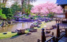Buddhist Zen Garden