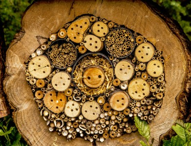 Bug Hotel Jigsaw Puzzle