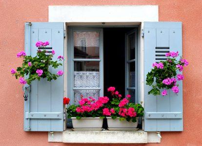 Burgundy Window Jigsaw Puzzle