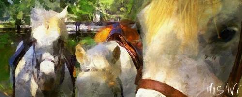 Camargue Horses Jigsaw Puzzle