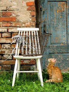 Cat and Basket Jigsaw Puzzle