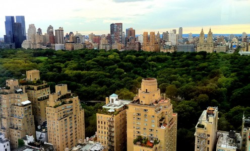 Central Park Jigsaw Puzzle