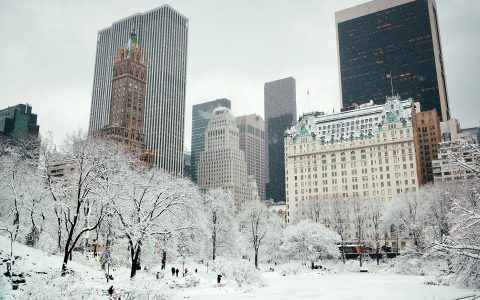 Central Park in Snow Jigsaw Puzzle